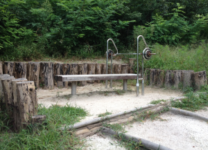 picture of weights in the park