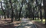 2013-09-16 04 Tumuli Park